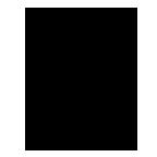 Logo Mainbro